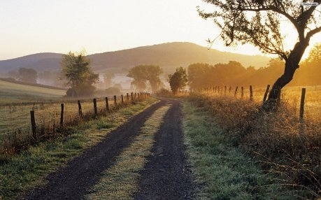 country_road_wallpaper_418a6
