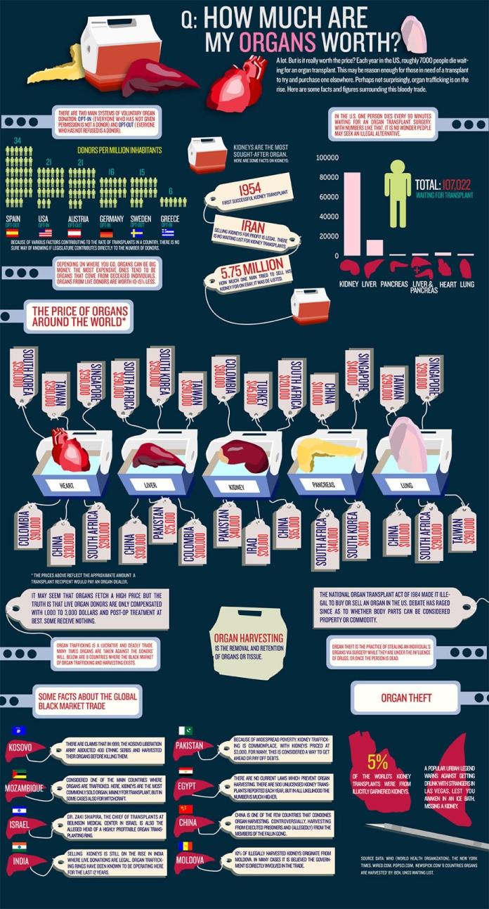 organs1.jpg