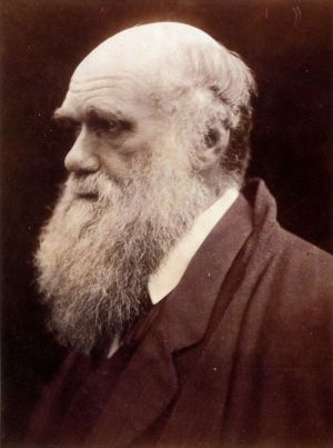 800px-Charles_Darwin_by_Julia_Margaret_Cameron_3